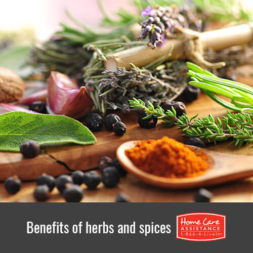Why Herbs and Spices Are Beneficial for Seniors in Anchorage, AK