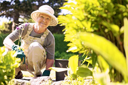 Creative Home Projects Seniors Can Do in Anchorage, AK