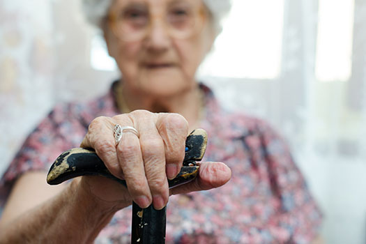 What Leads to Parkinson's Disease in Older Adults in Anchorage, AK
